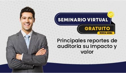 Seminario Virtual Gratuito: Principales reportes de auditoria su Impacto y valor
