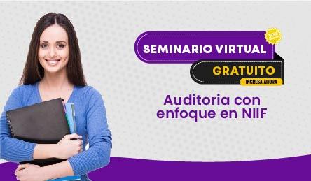 Seminario Virtual Gratuito: Auditoria con enfoque en NIIF.