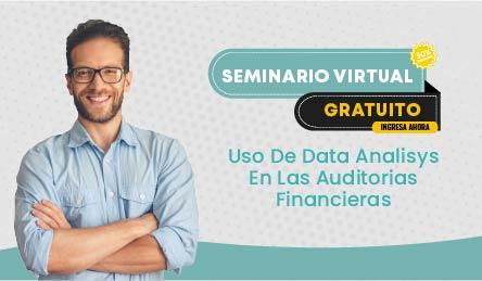 Seminario Virtual Gratuito: Uso De Data Analisys En Las Auditorias Financieras
